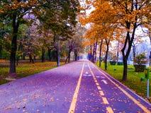 Färgrik boulevard i Kisselef, bakgrund Royaltyfri Fotografi