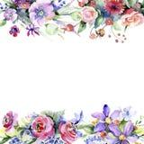 färgrik bukett Blom- botanisk blomma Fyrkant för ramgränsprydnad royaltyfri illustrationer