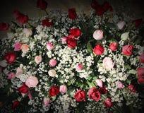 F?rgrik bukett som ?r dekorativ av r?da och rosa rosor som blommar modeller med textur f?r vit tusensk?na f?r bakgrund royaltyfri fotografi