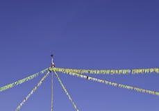 Färgrik bunting sjunker Fotografering för Bildbyråer