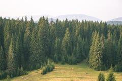 färgrik bygdsikt i carpathians - retro tappning Royaltyfria Foton