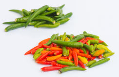 Färgrik chilipeppar med isoleringsbakgrund Arkivfoto