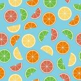 Färgrik citrus sömlös modell Royaltyfria Foton
