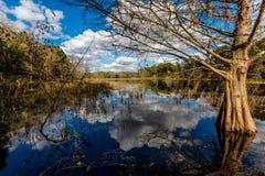 Färgrik Creekfield sjö på den Brazos krökningen Texas Arkivbild