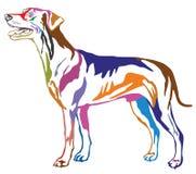 Färgrik dekorativ stående stående av tysk Pinscherst för hund Arkivfoto