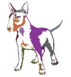 Färgrik dekorativ stående stående av hunden Bull terrier Arkivfoto