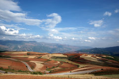 färgrik dongchuan jordbruksmark för porslin Royaltyfria Bilder