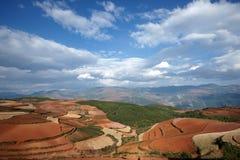 färgrik dongchuan jordbruksmark för porslin Royaltyfri Bild
