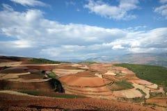 färgrik dongchuan jordbruksmark för porslin Arkivbilder