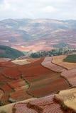 färgrik dongchuan jordbruksmark för porslin Arkivfoto