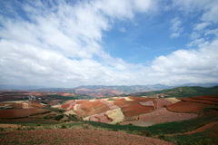 färgrik dongchuan jordbruksmark för porslin Royaltyfri Foto