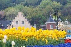 färgrik förgrundsträdgårdtulpan Arkivfoto