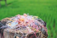 Färgrik fibertorkduk Arkivbilder