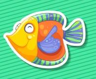 färgrik fisk Arkivbilder