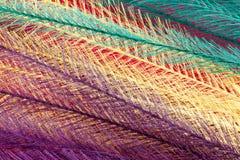 Färgrik fjäderlik bakgrund Arkivfoto