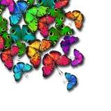 Färgrik fjärilsbakgrund för grupp Arkivbilder