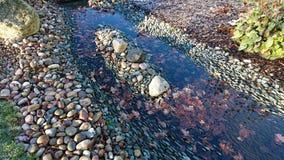 Färgrik flodsäng arkivbilder