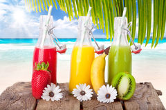 Färgrik fruktsaft på stranden Royaltyfria Bilder