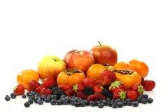 färgrik fruktsommar för samling Royaltyfria Foton