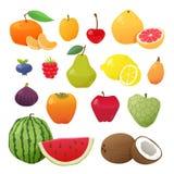 Färgrik fruktuppsättning också vektor för coreldrawillustration Fotografering för Bildbyråer