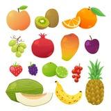 Färgrik fruktuppsättning också vektor för coreldrawillustration Royaltyfria Foton