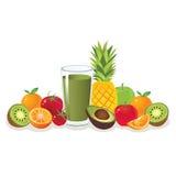 Färgrik fruktvektor Royaltyfri Foto