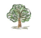 färgrik gammal tree royaltyfri illustrationer