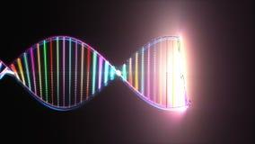 Färgrik genom för DNAgenetisk kod lager videofilmer