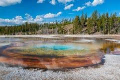 Färgrik geotermisk handfat i Yellowstone NP Royaltyfri Fotografi