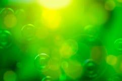 färgrik green för abstrakt bakgrund Arkivfoto