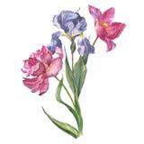Färgrik grupp för vattenfärg av blommor arkivbilder