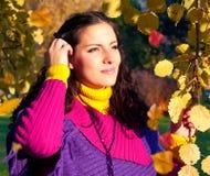 färgrik höst 10 Royaltyfria Bilder