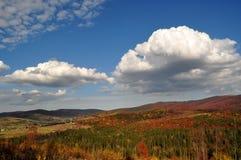 Färgrik höst i bergen Arkivbilder