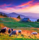 Färgrik höstsolnedgång i bergby arkivfoto