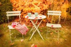 Färgrik höstträdgårdvrå med den varma te och filten royaltyfria bilder