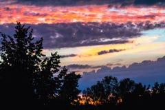 Färgrik himmel och Forest Silhouette på solnedgången Royaltyfri Bild