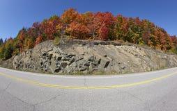 Färgrik huvudväg Royaltyfri Bild