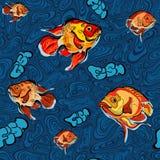 Färgrik illustration av den sömlösa modellen för fisk Royaltyfri Fotografi