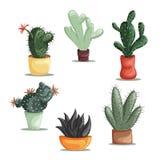 Färgrik illustration av suckulentväxter och kakturs i krukor Arkivbild