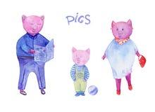 Färgrik illustration för vattenfärg om svinfamiljen Utdragen konst för hand med teckendesighsvin och text royaltyfri illustrationer