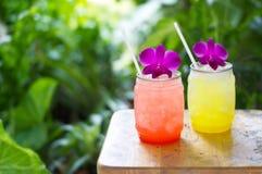 Färgrik kall drink i sommar på naturbakgrund fotografering för bildbyråer