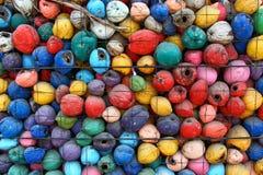 Färgrik kokosnöt Arkivfoto