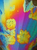 färgrik kristallis Royaltyfria Foton