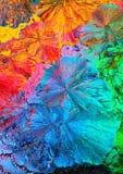 färgrik kristallmakro Arkivbild