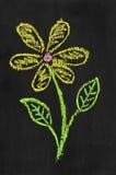 Färgrik kritaillustration av blomman Arkivfoto