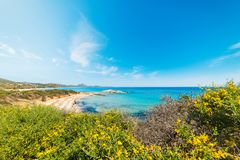 Färgrik kust i den Scoglio di Peppino stranden Royaltyfria Bilder