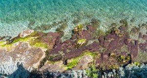 Färgrik kustlinje Arkivfoto