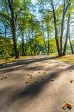 Färgrik lövverk i parkerar - i Sunny Autumn Day With Golden Leaves i träd, Lettland, Europa, begrepp av att koppla av loppdag in arkivfoton