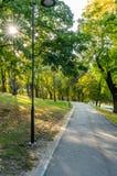 Färgrik lövverk i parkerar - i Sunny Autumn Day With Golden Leaves i träd, Lettland, Europa, begrepp av att koppla av loppdag in royaltyfria bilder