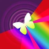 Färgrik ljus bakgrund med fjärilen Royaltyfria Bilder